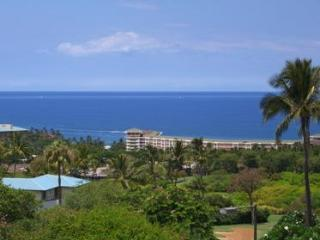 $205 Nov./Dec.'16 SALE-Ocean Views-Ekolu #1108 - Wailea vacation rentals