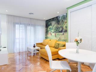 Studio DINO, near the Prado Museum - Ciempozuelos vacation rentals