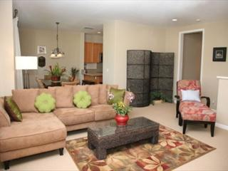 Spacious & Beautiful 2 bedroom Townhouse with AC! 10% off Fall Dates! - Princeville vacation rentals