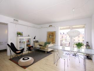 Large and quiet Copenhagen apartment with balcony - Copenhagen vacation rentals
