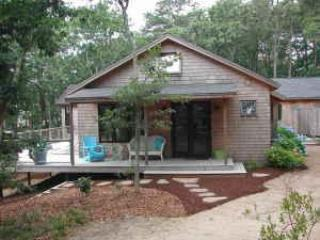 Exterior - Gorgeous Wellfleet Home--Walk to Gull Pond - Wellfleet - rentals