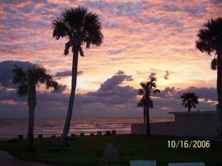 Spacious Condo in Oceanfront Complex near Flagler - New Smyrna Beach vacation rentals