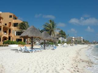 Beach Gem in Akumal with Incredible Views! - Akumal vacation rentals