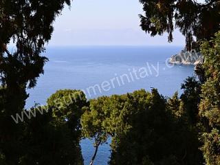 Villa Fenicia - Capri vacation rentals