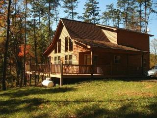 Bear Cub Cabin - Murphy vacation rentals