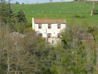 Rental The Barn Owl's Barn, Loire's Canyon - Beauzac vacation rentals