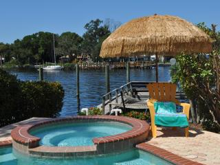 5 Bedroom Luxury Waterfront Home in Tarpon Springs - Tarpon Springs vacation rentals