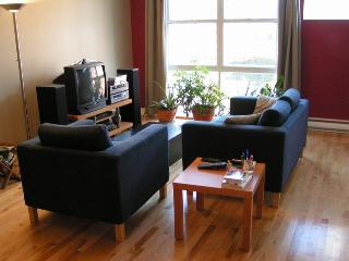 Furnished apartment to rent in Montreal - Plateau - Montreal vacation rentals