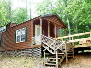 Romantic 1 bedroom Murphy Cabin with Deck - Murphy vacation rentals