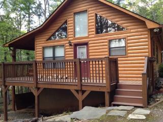 Bear's Den - Murphy vacation rentals