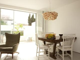 Charming Apartment in the heart of picturesque  Neve Tzedek - Tel Aviv vacation rentals