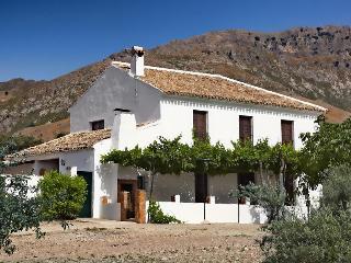 Gran Casa Rural en el centro de Andalucia - Priego de Cordoba vacation rentals