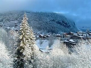 Charming 2 bedroom Condo in Morzine-Avoriaz with Deck - Morzine-Avoriaz vacation rentals