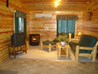 5 BR lakefront lodge in North MN walleye country. - Grand Rapids vacation rentals