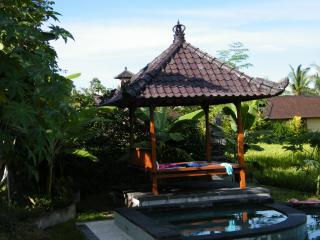 Villa with pool in Ubud - Ubud vacation rentals