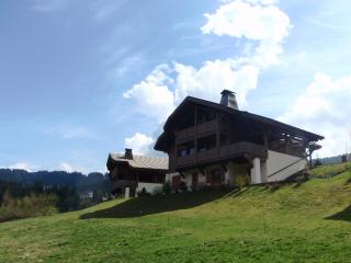 Chalet Amitie - Les Gets vacation rentals