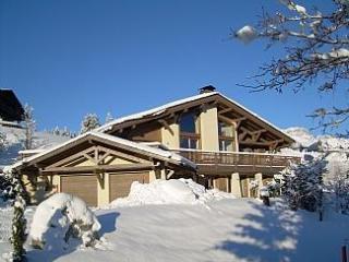 Chalet Rafaelle - Menthon-Saint-Bernard vacation rentals