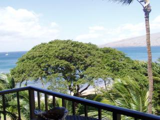 Oceanfront ,  $99. Kihei, #509, Kealia Resort, Mau - Kihei vacation rentals