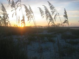 Oceanfront- A Few Summer Weeks Left!! Free WiFi! - Fripp Island vacation rentals