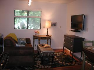 Private, Remodeled Cottage Studio 1 Block to Beach - Solana Beach vacation rentals