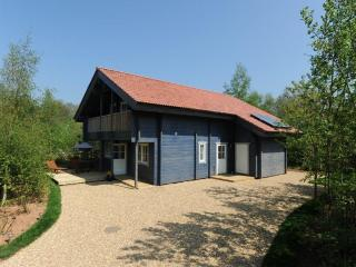 Robins Eco Lodge, Mill Meadow, Taunton, Somerset - Milverton vacation rentals