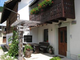 BOHINJ valley - NA VASI Apartments - Bohinjska Bistrica vacation rentals