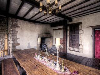 Medieval Manor House: Sleeps 16 - Caldicot vacation rentals