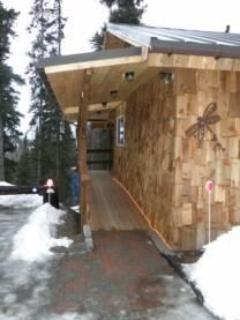 Escape for Two- Dragonfly Cabin - Soldotna vacation rentals