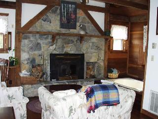Nice Cabin with Internet Access and A/C - Steeles Tavern vacation rentals