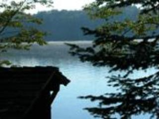 Comfortable 3 bedroom Cabin in Indian Lake - Indian Lake vacation rentals