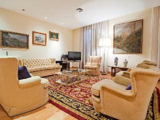 BCN Paseo de Gracia Style - Barcelona vacation rentals