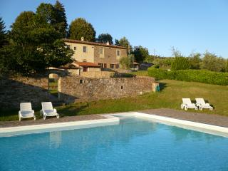 Villa for Three Families on a Wine Estate - Villa Olivo - Rufina vacation rentals
