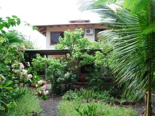 Lovely House with Internet Access and Garden - Puerto Ayora vacation rentals