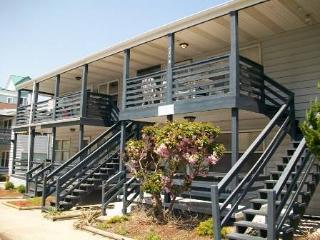 SOUTHSIDE 101B - Ocean City Area vacation rentals