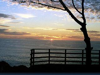 Ocean Front Home on 7 Acres (Seacliff Hideaway) - Mendocino vacation rentals