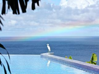 Exclusive, total privacy and luxurious. - Nevis vacation rentals