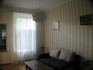 Cozy apartment in the very center - Lviv vacation rentals