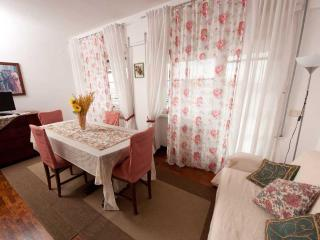 La terrazza su Roma. Penthouse for up to 12 people - Rome vacation rentals