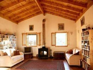 The Olive Farm - sea views- set in 400 olive trees - Kiparissia vacation rentals