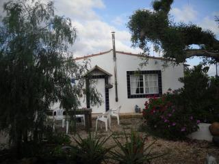 detached Villa in hills & orange groves.T/2 villa - Silves vacation rentals