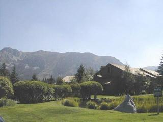 Bright Chalet with Deck and Internet Access - Mammoth Lakes vacation rentals