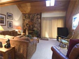 #228 Solitude - Image 1 - Mammoth Lakes - rentals