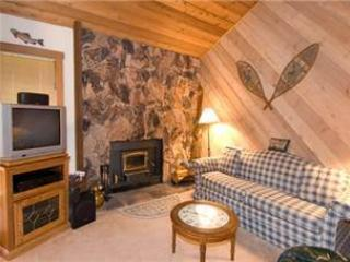 #434 White Bark - Image 1 - Mammoth Lakes - rentals