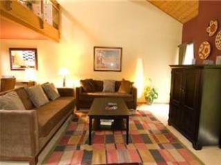 #549 Golden Creek - Image 1 - Mammoth Lakes - rentals