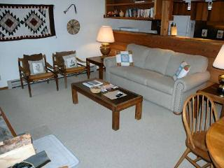 1 bed /1 ba- COLUMBINE 1011 - Wilson vacation rentals