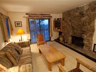 2 bed /2 ba- SLEEPING INDIAN EAST #8 - Teton Village vacation rentals