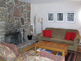 2 bed /2 ba- SLEEPING INDIAN WEST #4 - Teton Village vacation rentals