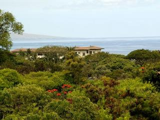 Nice Condo with Internet Access and A/C - Wailea vacation rentals