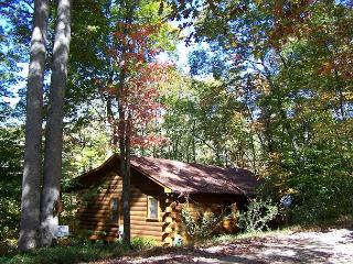 Hummingbear Lodge The perfect cabin for 2 couples - Blairsville vacation rentals