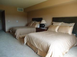 Lodge 208 - 2 Queen beds, Sleeps 4, WIFI - Tamarack Resort vacation rentals